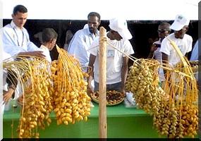 Mauritanie,La fête de l'oasis: le Festival des dattes du 14 au 16 juillet 2017 à Tidjikja.